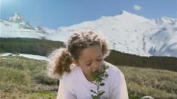 ¡Deja tu huella! y ayuda a la reforestación, gracias a Lanjaron