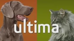 Ultima de Affinity, aporta a tu mascota multiples beneficios para su salud